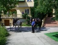Dom Opieki Warszawa - terapia