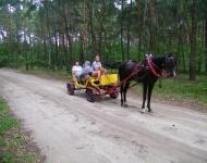 Dom Seniora Warszawa - wycieczka w lesie